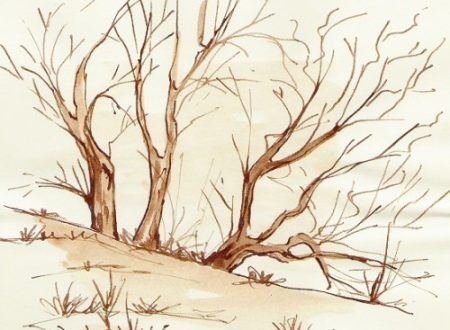 Enveren nel bosch  – Inverno nel bosco – poesia in dialetto bresciano con traduzione in italiano