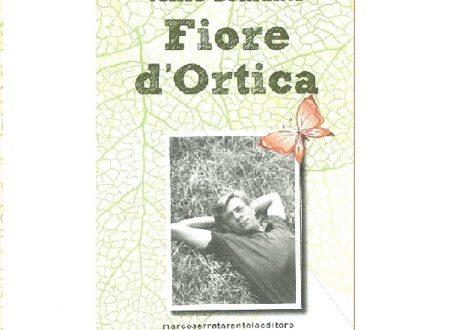 Fiore d'ortica romanzo di Velise Bonfante