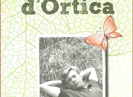 Commenti al romanzo Fiore d'Ortica – una storia d'amore, d'antan, di forti sentimenti