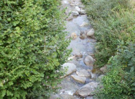 El fosadèl Il piccolo fossato Poesia di Velise Bonfante